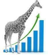 giraffe-graph-small
