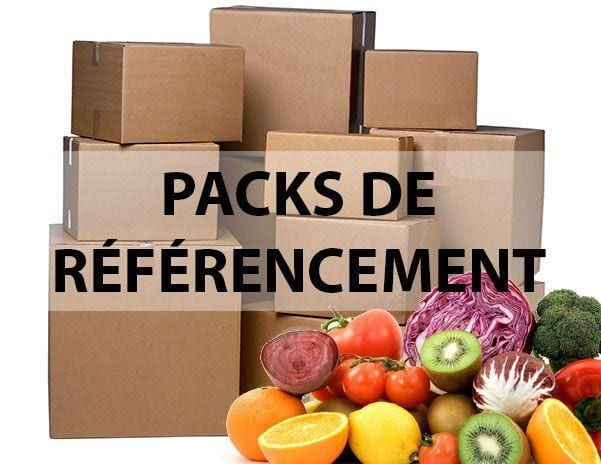 pack-referencement